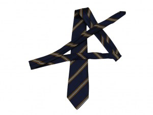navy-with-mustard-and-white-tie