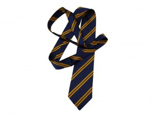 royal-and-gold-tie